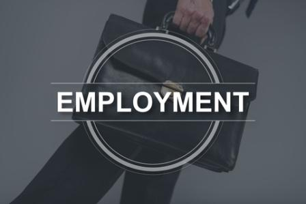 employment-report-2018-Queens-NY-mortgage-broker