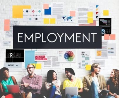 Employment Report 2018